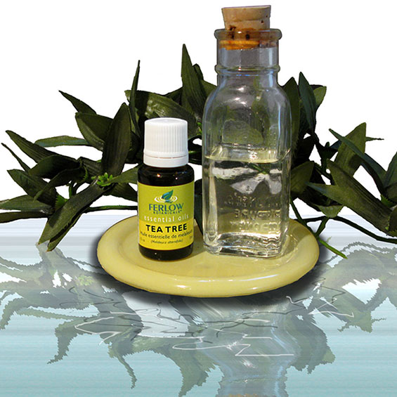 Opinioni-tea-tree-oil